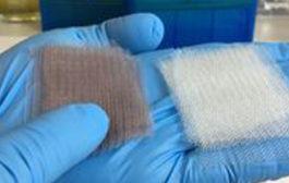 Mit Gold gegen Bakterien
